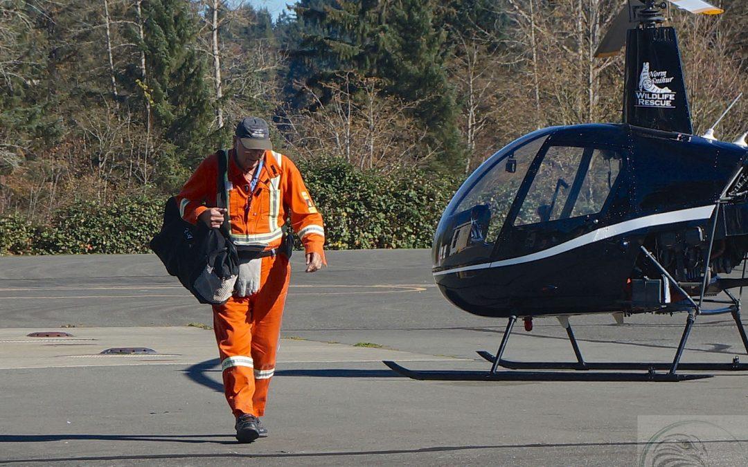 Helicopter Volunteer