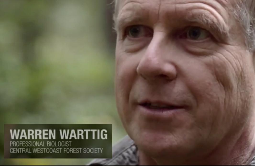 Warren Warttig