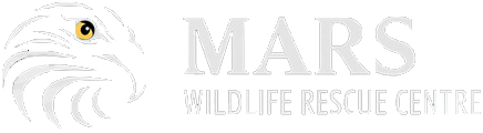 MARS Wildlife Rescue