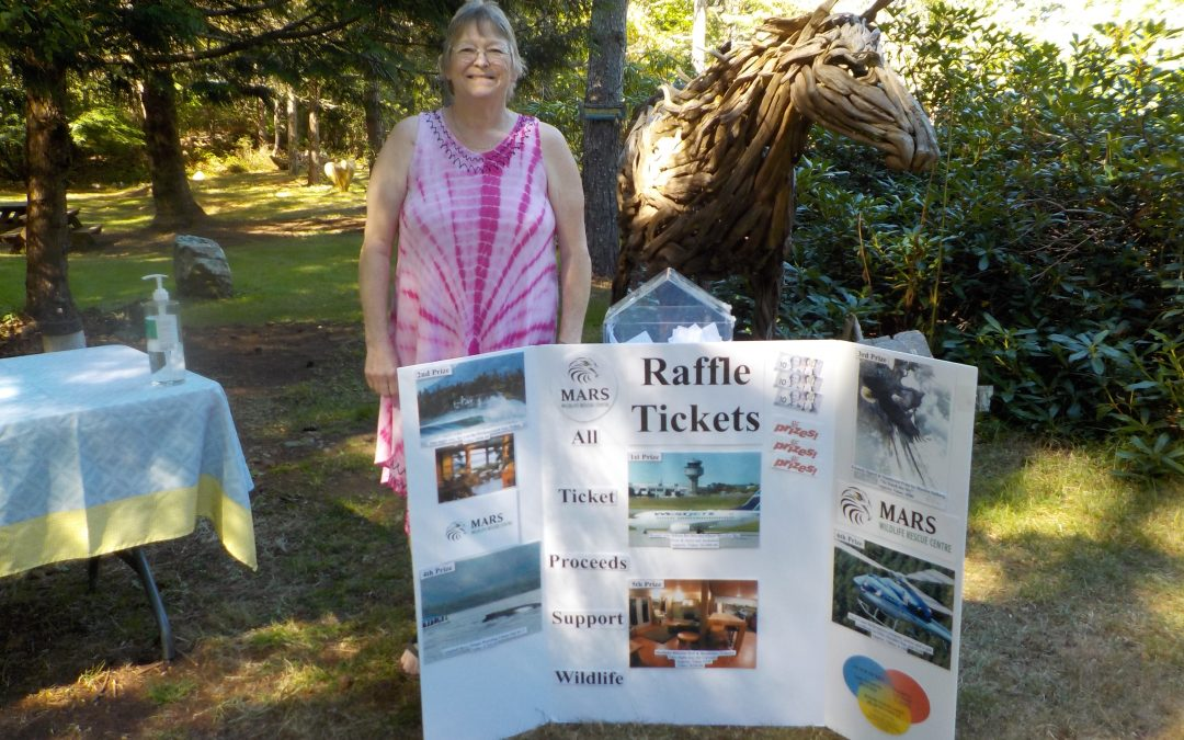 Our Summer Raffle Prize Donors
