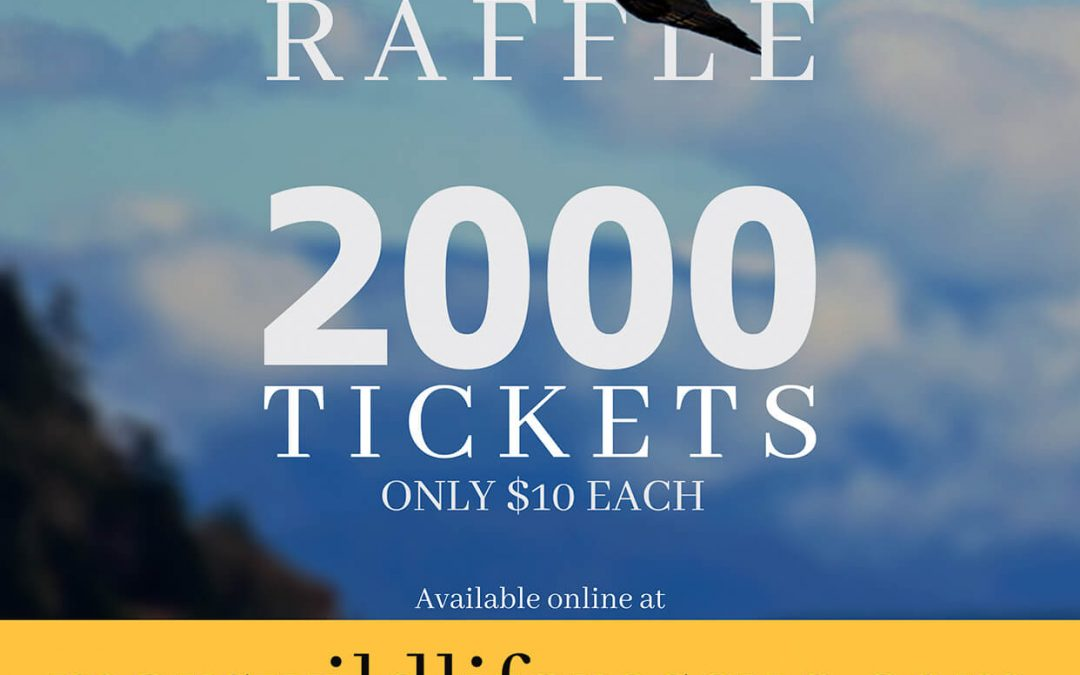 Support MARS by buying 50/50 Raffle Tickets (SOLD OUT)