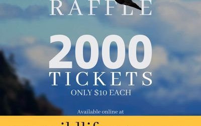 Support MARS by buying 50/50 Raffle Tickets!
